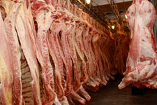 Транспортировка мяса в Китай