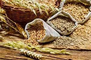Доставка зерна в Китай